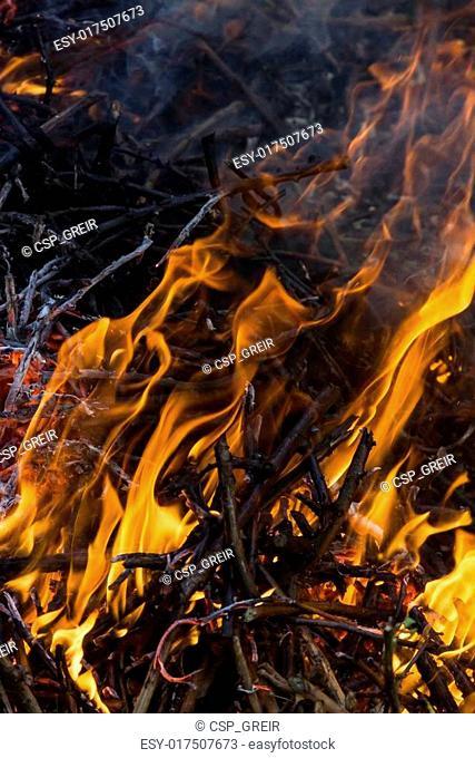 orange fire flames, vertical