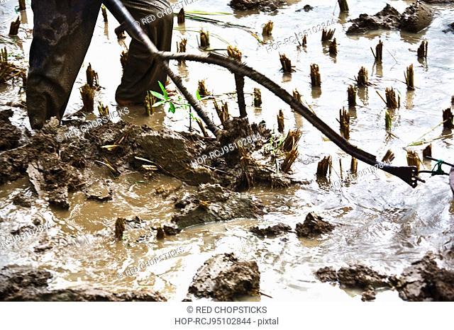 Low section view of a farmer ploughing, Yangshuo, Guangxi Province, China
