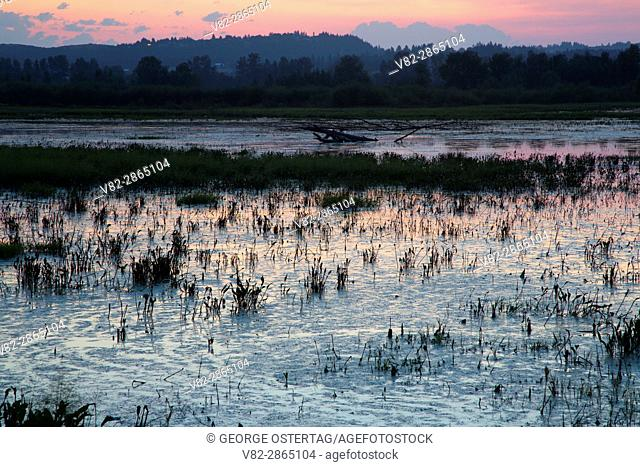 Pintail Marsh dawn, Ankeny National Wildlife Refuge, Oregon