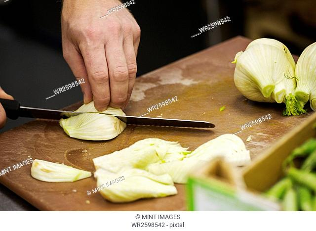 Close up of a chef slicing fennel bulbs