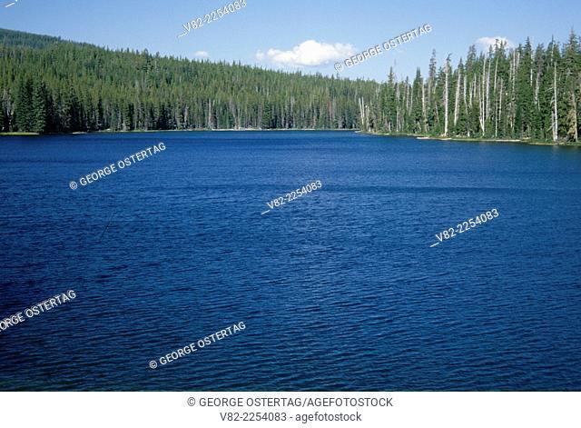 Bobby Lake, Deschutes National Forest, Oregon