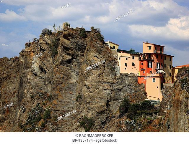 View of Manarola from the trail Via dell 'Amore, Cinque Terre region, Liguria, Italy, Europe