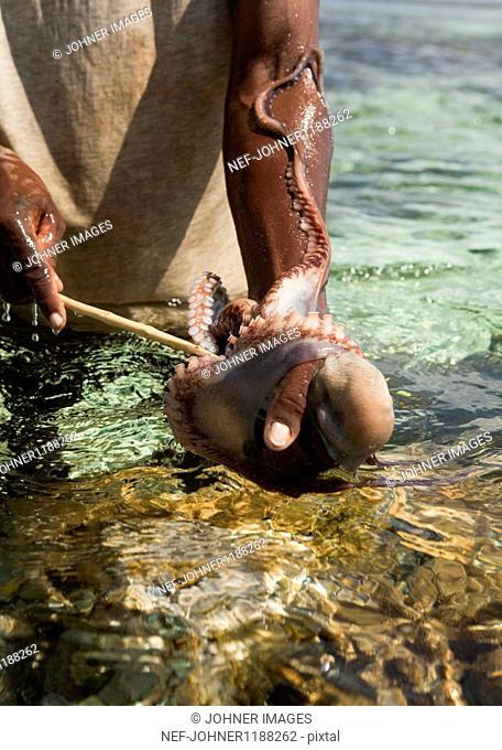 Man gutting octopus