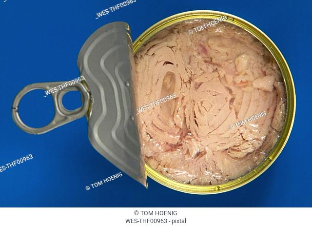 Open Tin of Tuna, elevated view