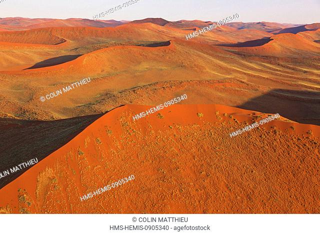 Namibia, Hardap region, Namib desert, Namib-Naukluft national park, Namib Sand Sea listed as World Heritage by UNESCO, near Sossusvlei