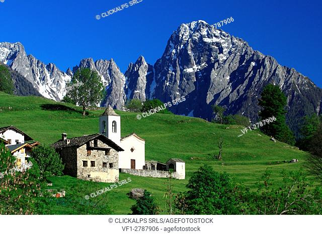 The contrast between the green lawn of Daloo and the north wall of the Prata peak Valchiavenna, valtellina Sondrio, Lombardy, Italy Europe
