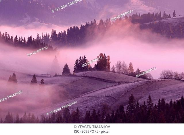 Misty sunrise, Krasnik village area, Carpathian Mountains, Ivano-Frankivsk region, Ukraine