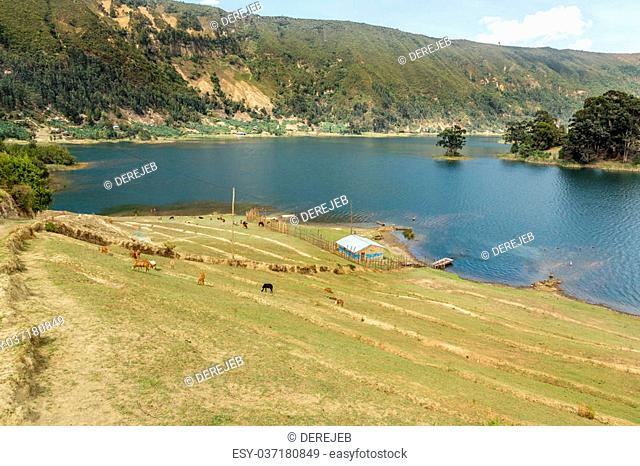 Beautiful Wonchi crater lake situated in Oromia Regional state in South West Shewa zone