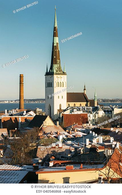 Tallinn, Estonia. Church Of St. Olaf Or Olav And Roofs Of Other Houses In Winter Sunny Day. Popular Destination Scenic