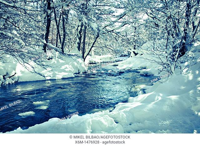 snow covered river  Baias river route  Gorbea Natural Park, Alava, Spain