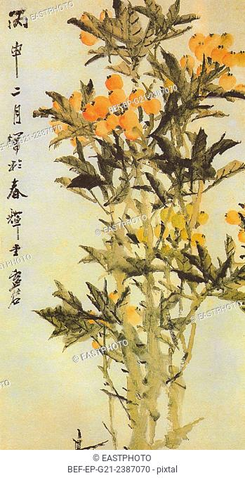 Qing Xu Gu Loquat Figure