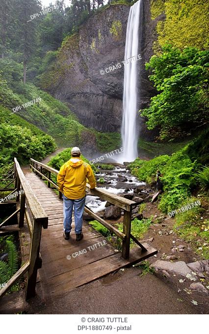 a hiker on a bridge looking at latourell falls in columbia river gorge national scenic area, oregon, united states of america