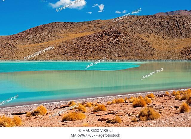 laguna celeste parzialmente ghiacciata, los lipez, altopiano, bolivia, america del sud