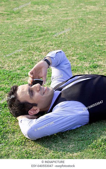 Businessman talking on a mobile phone , INDIA , DELHI