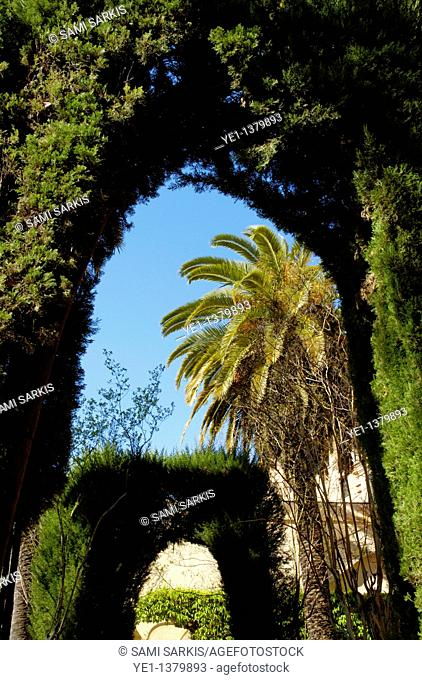 Sculpted hedges in the gardens of the Alcazar of Seville, Seville, Andalusia, Spain