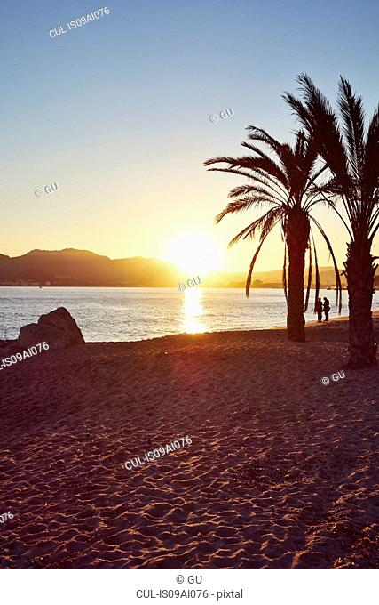 Beach scene, French Riviera, Cannes, France