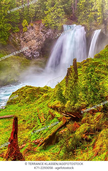 The Sahalie Falls in the Willamette National Forest, Oregon, USA