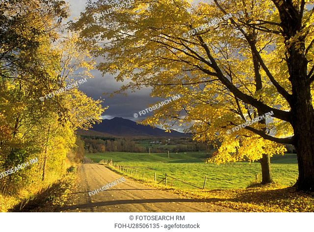 fall, road, autumn, Vermont, Scenic view of the countryside along a country road in the fall in Pleasant Valley in Cambridge in Lamoille County in the state of...