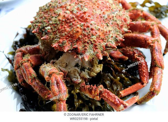 Crab served in restaurant