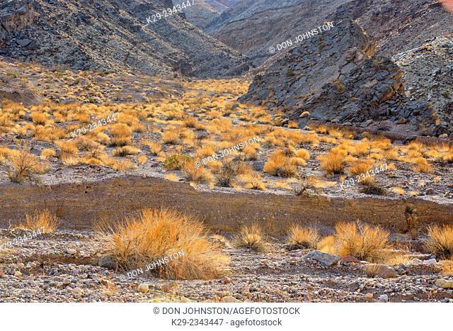 Titus Canyon, Death Valley National Park, California, USA