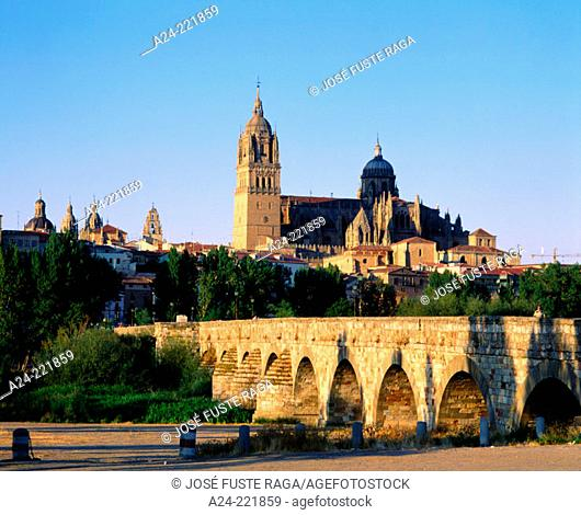 The new cathedral. Salamanca. Spain