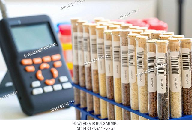 Food samples in test tubes in the laboratory