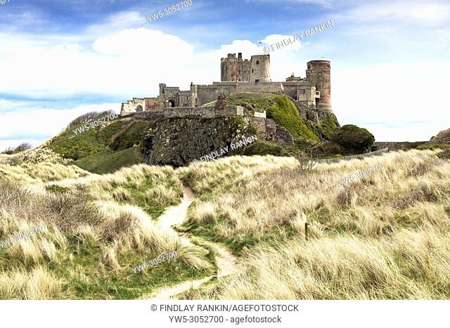 Bamburgh Castle and part of the Northumberland coastal walkway route, Bamburgh, Northumberland, England, UK