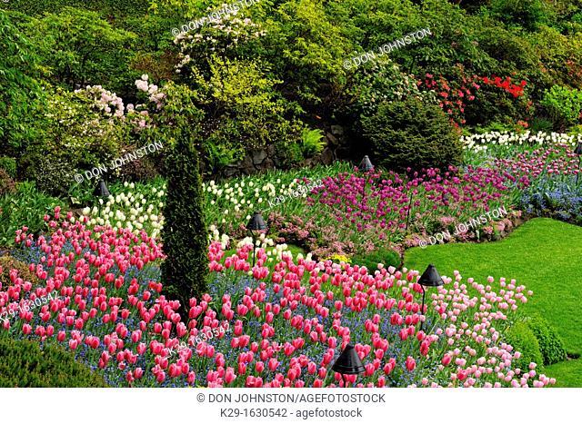 Butchart Gardens- Floral displays in the Sunken Garden, Victoria, BC, Canada