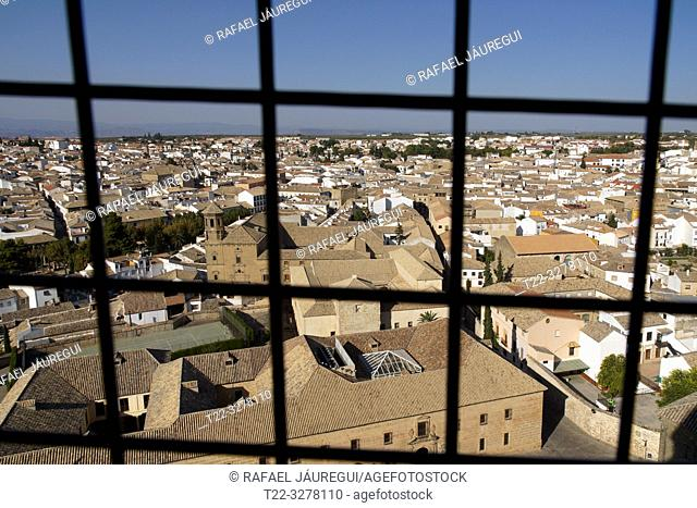 Baeza (Spain). Panoramic from the bell tower of the Cathedral of the Nativity of Our Lady of Baeza