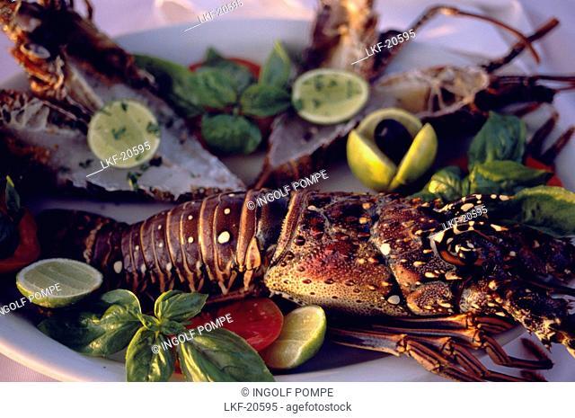 Lobster in La Puntilla De Piergiorgio Palace Restaurant, Sosua, Dominican Republic, Caribbean
