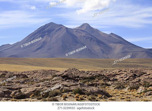Chile, Antofagasta Region, Atacama Desert, Andes Mountains, Cerro Miscanti,