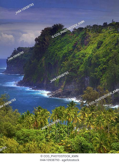 USA, United States, America, Hawaii, Big Island, Pacific, Ocean, Valley, Palm Trees, Near Hilo, Hilo, Viewpoint, Tourist, Tourism, coast