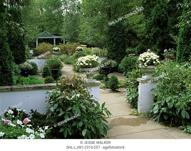 Walled Garden. Area in garden. White petunias. Asters, semi formal white walls seperate, sections of garden, each wall topped with an urn filled with mums