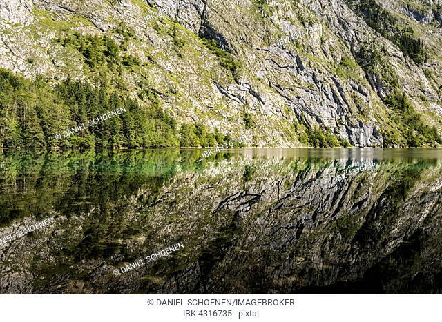 Obersee, Königssee, Berchtesgaden National Park, Berchtesgadener Land district, Upper Bavaria, Bavaria, Germany