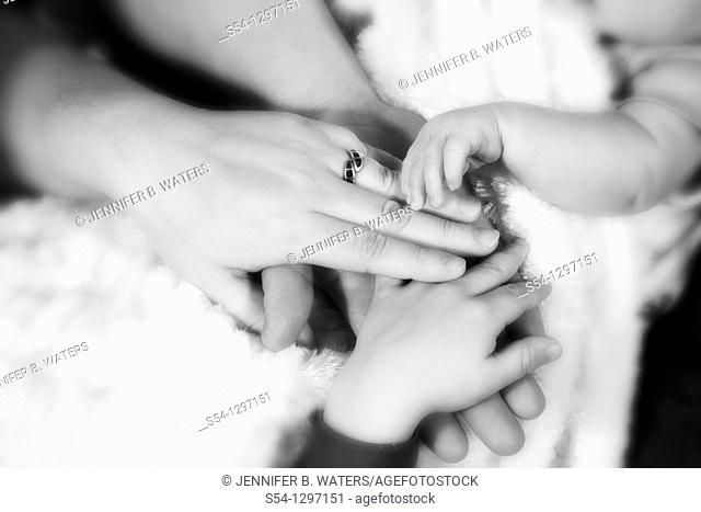 The hands of a mother, father, toddler, and newborn