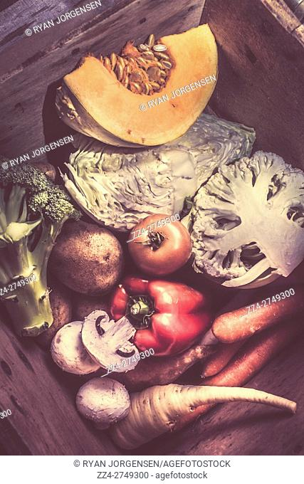 Toned retro image of fresh vegetables in a box or crate with portions of pumpkin, cauliflower, cabbage, broccoli, onion, red peppers, parsnip