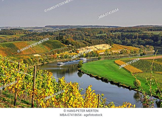 The Moselle valley at Palzem, Obermosel, Rhineland-Palatinate, Germany