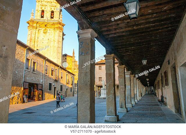 Bell tower of the cathedral from the arcade. El Burgo de Osma, Soria province, Castilla Leon, Spain