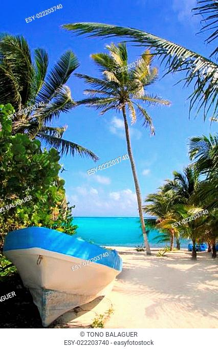 Caribbean tropical beach with boat beached