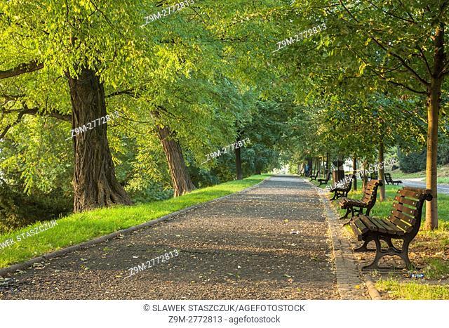 Autumn morning in Park Staromiejski, Wroclaw, Poland