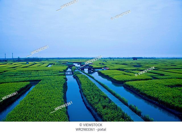 xinghua jiangsu china