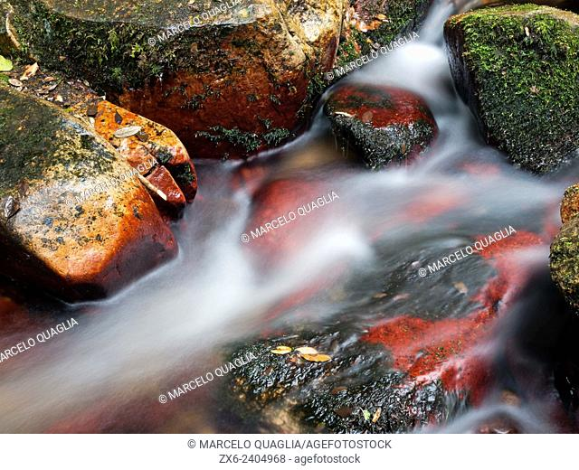 Red stones at Riells stream. Montseny Natural Park. Barcelona province, Catalonia, Spain