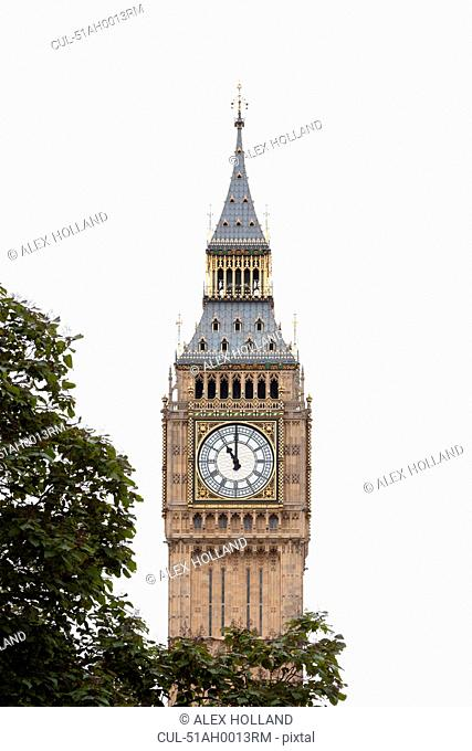 Big Ben clock tower with tree