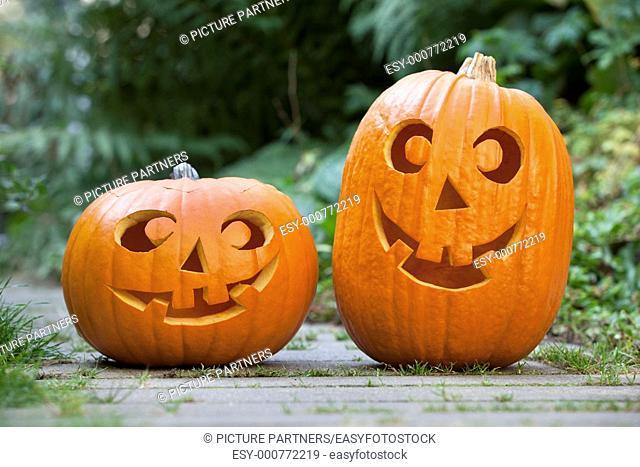 Two Halloween pumkins in the garden