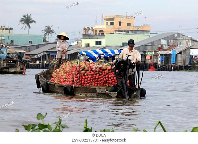 Dragon fruit on a motor boat,floating market at Cai Rang