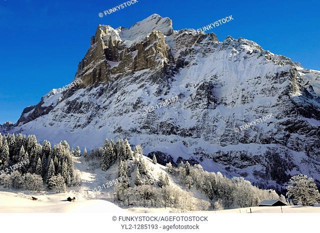 Alpine slopes looking towards the Wetterhorn  Swiss Alps, Switzerland