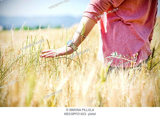 Hand of young woman touching spikes in grain field