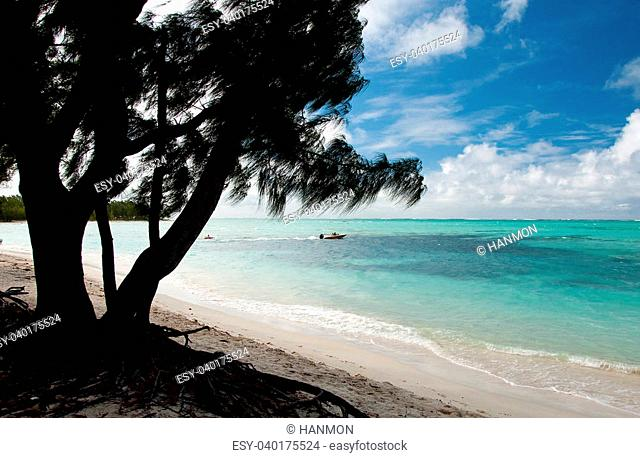 Ile aux cerfs is an small island near the east coast of the island of Mauritius in the Flacq District
