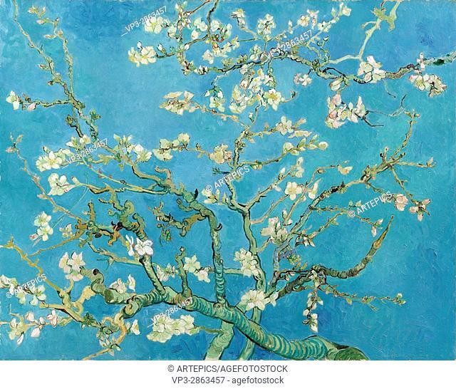 Vincent van Gogh - Almond blossom - Van Gogh Museum, Amsterdam