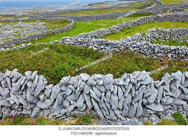 Brannock Islands lighthouse  West coast  Inishmore Island, Aran Islands, Galway County, West Ireland, Europe